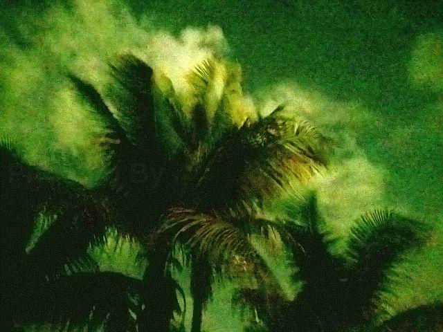 "Jeff Glovsky (Photo By) - ""Submerged (Darkness)"""
