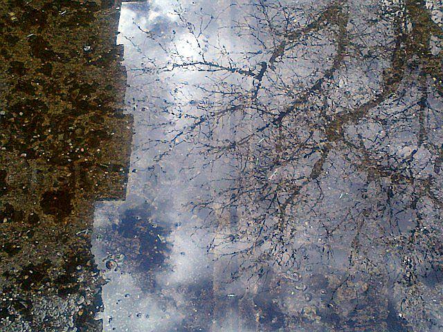"""Jeff Glovsky (Photo By) - """"Snow Sky"""""""