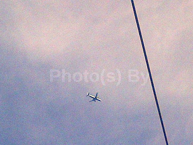 "Photo(s) by Jglo - ""Mo(u)rning Flight"""